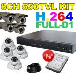 8Ch Outdoor + Indoor Surveillance System